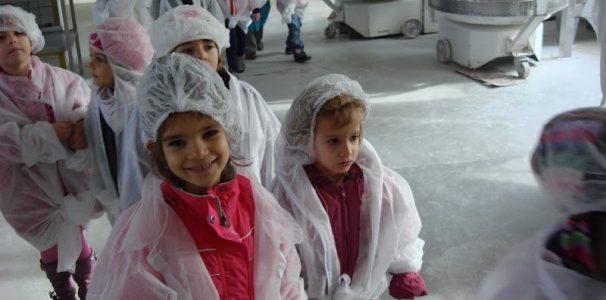 Vizita la fabrica de paine Vel Pitar